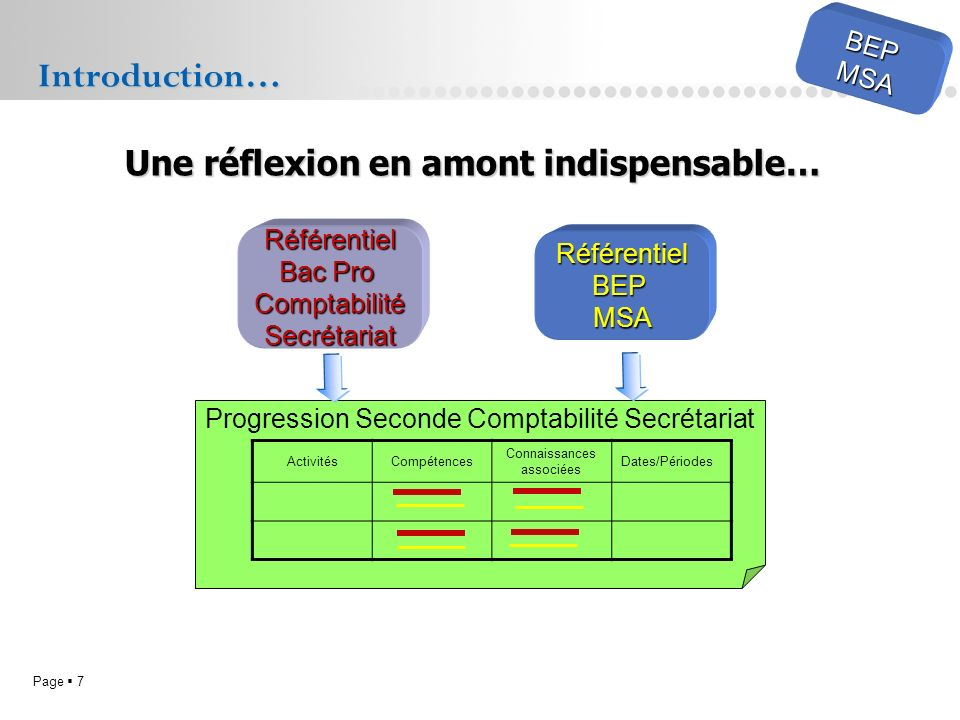 Introduction… Une réflexion en amont indispensable… BEP MSA