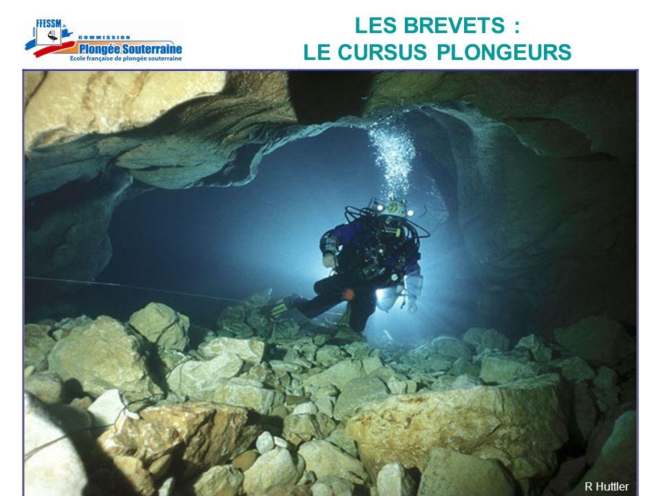 LES BREVETS : LE CURSUS PLONGEURS