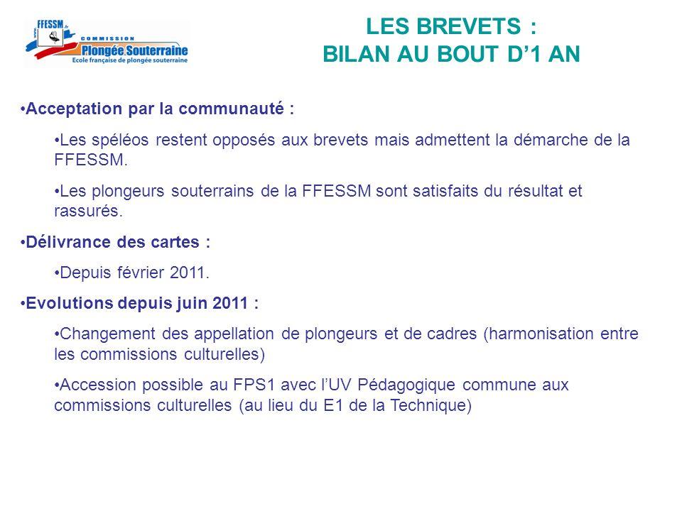 LES BREVETS : BILAN AU BOUT D'1 AN
