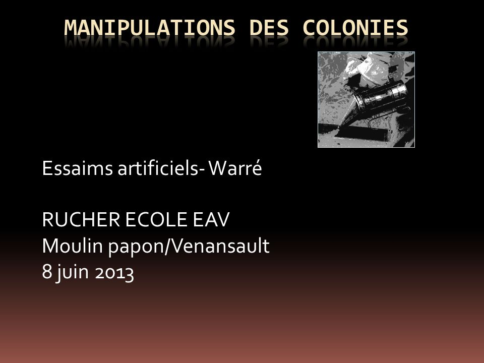 Manipulations des colonies