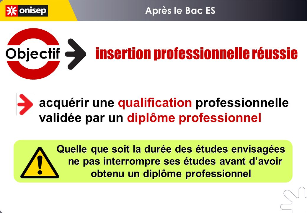 insertion professionnelle réussie