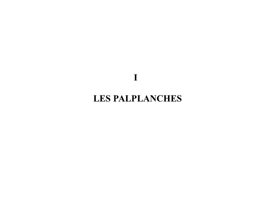 I LES PALPLANCHES