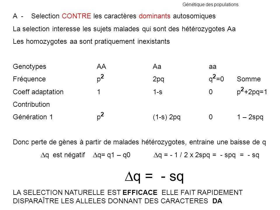 A - Selection CONTRE les caractères dominants autosomiques