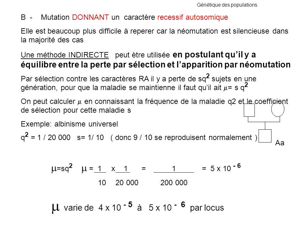 B - Mutation DONNANT un caractère recessif autosomique