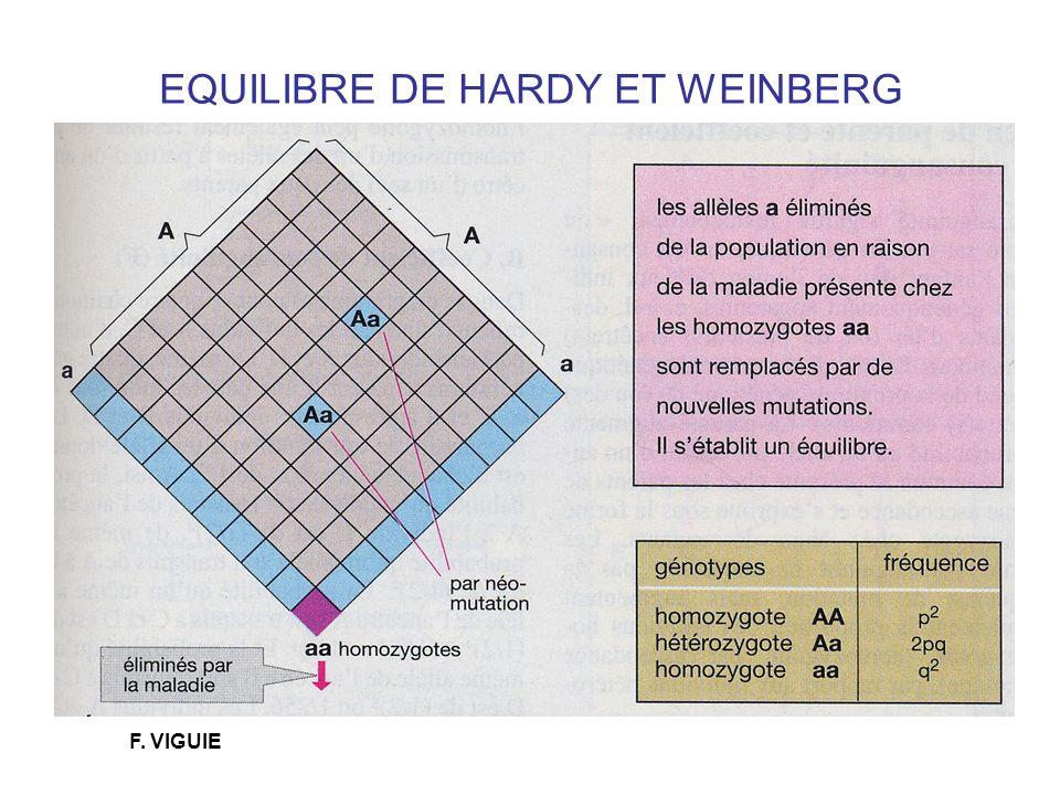 EQUILIBRE DE HARDY ET WEINBERG