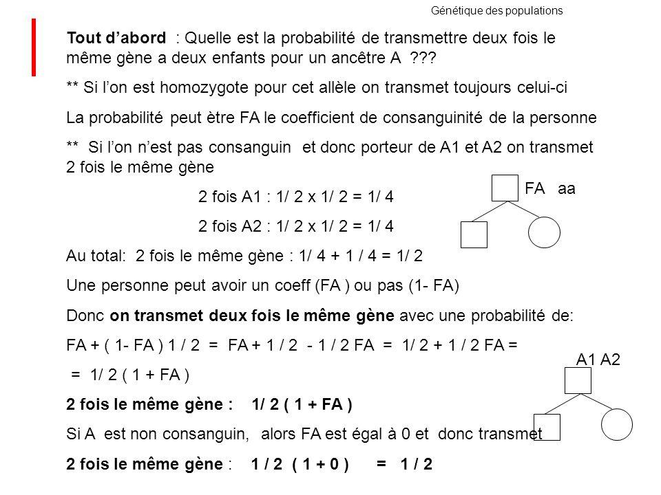Au total: 2 fois le même gène : 1/ 4 + 1 / 4 = 1/ 2
