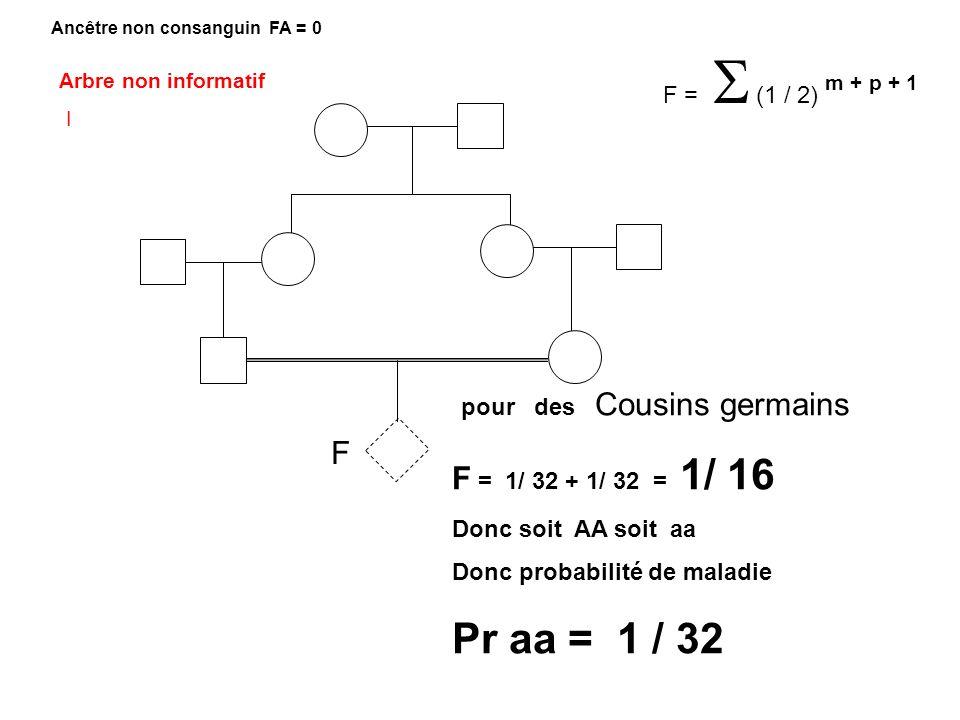 Pr aa = 1 / 32 Arbre non informatif I pour des Cousins germains