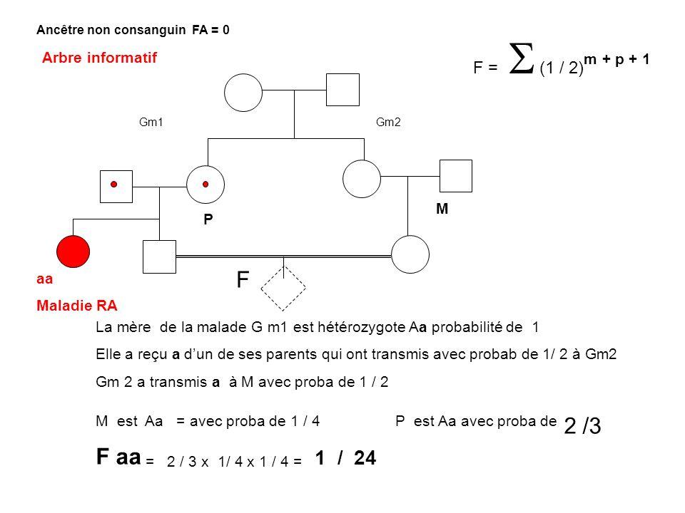 F aa = 2 / 3 x 1/ 4 x 1 / 4 = 1 / 24 Arbre informatif M P F aa