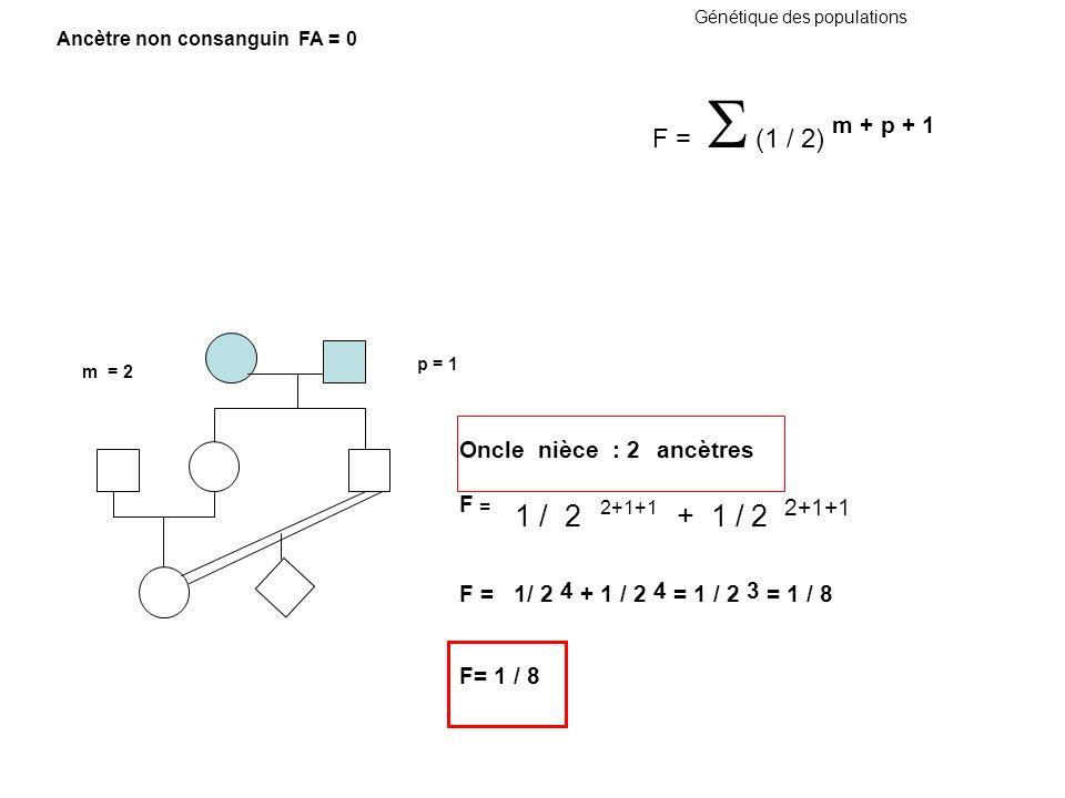 Oncle nièce : 2 ancètres F = 1 / 2 2+1+1 + 1 / 2 2+1+1