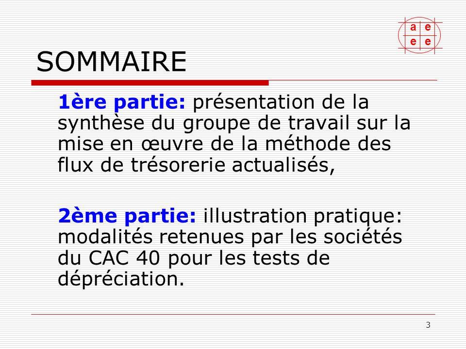 SOMMAIRE 1ère partie: présentation de la synthèse du groupe de travail sur la mise en œuvre de la méthode des flux de trésorerie actualisés,