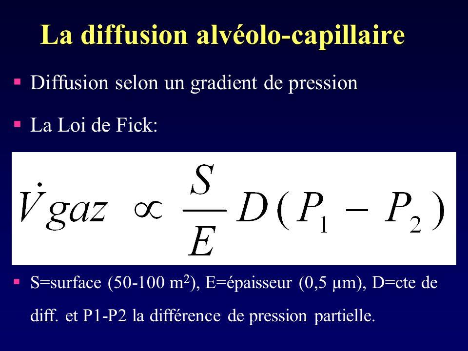 La diffusion alvéolo-capillaire