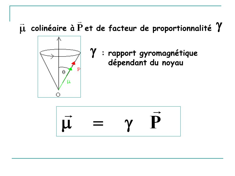 colinéaire à et de facteur de proportionnalité : rapport gyromagnétique dépendant du noyau