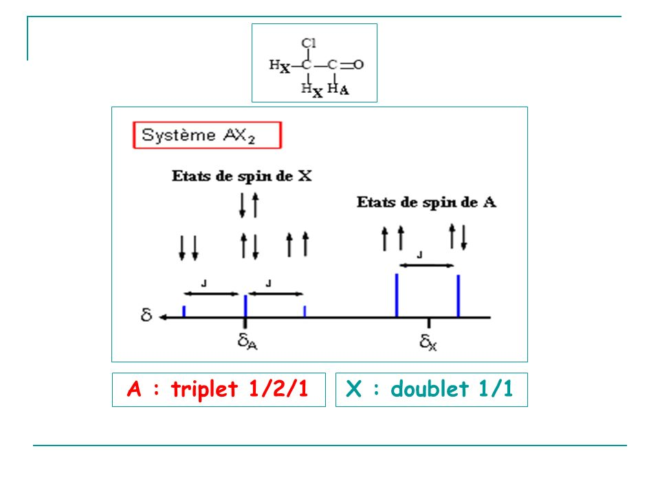 A : triplet 1/2/1 X : doublet 1/1