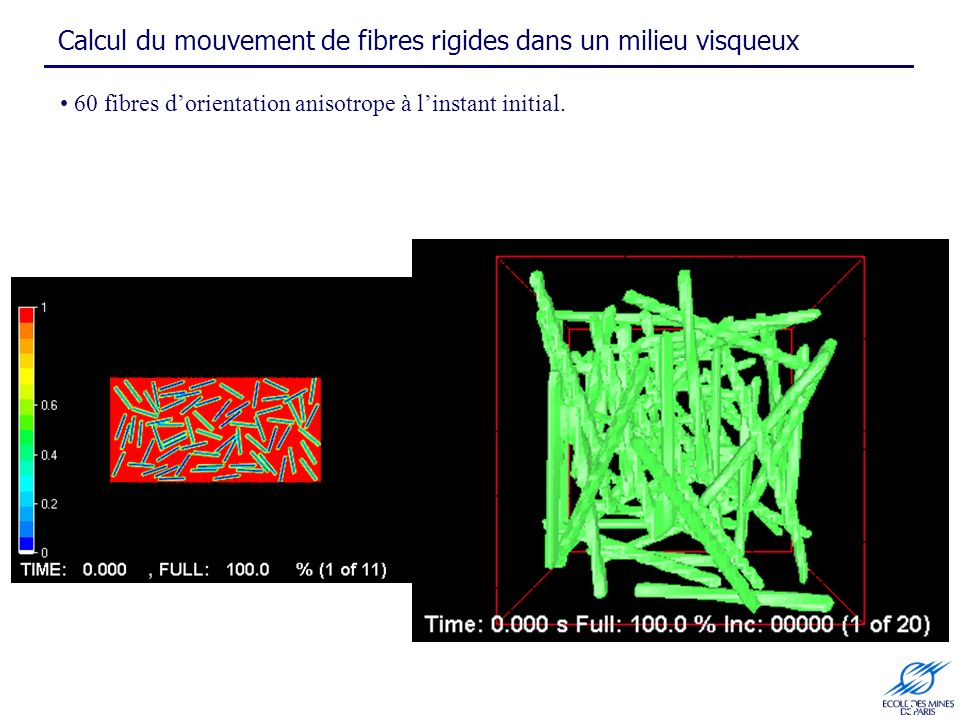 Calcul du mouvement de fibres rigides dans un milieu visqueux