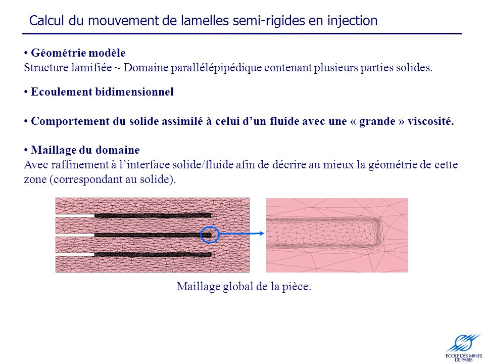 Calcul du mouvement de lamelles semi-rigides en injection