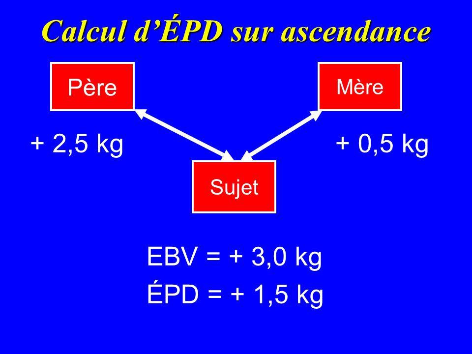 Calcul d'ÉPD sur ascendance