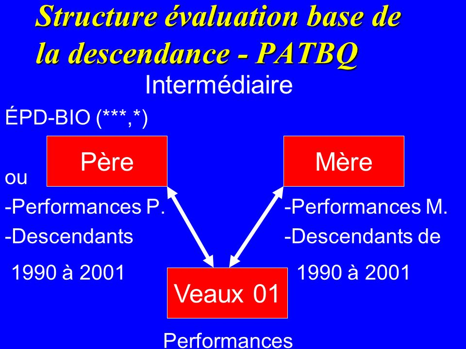 Structure évaluation base de la descendance - PATBQ