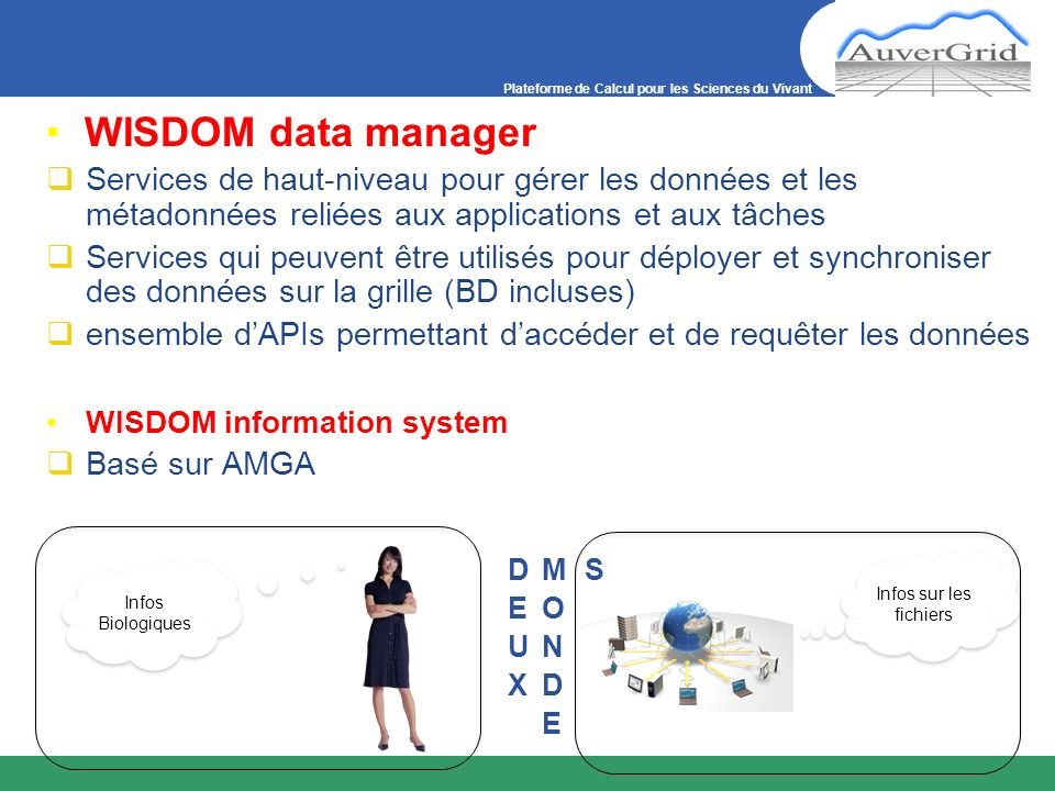 WISDOM data manager Services de haut-niveau pour gérer les données et les métadonnées reliées aux applications et aux tâches.