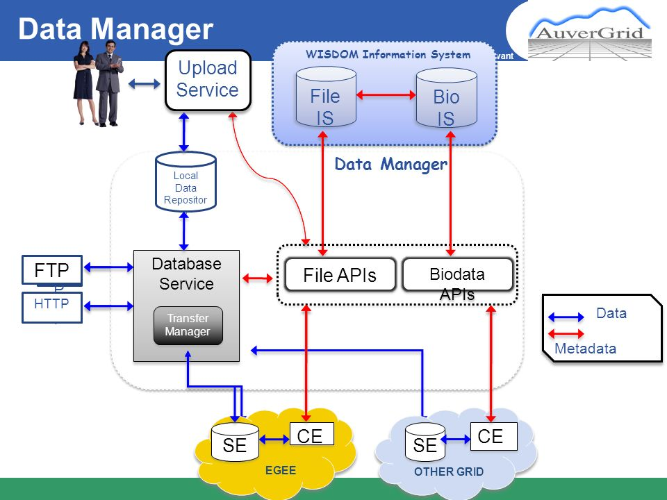 WISDOM Information System