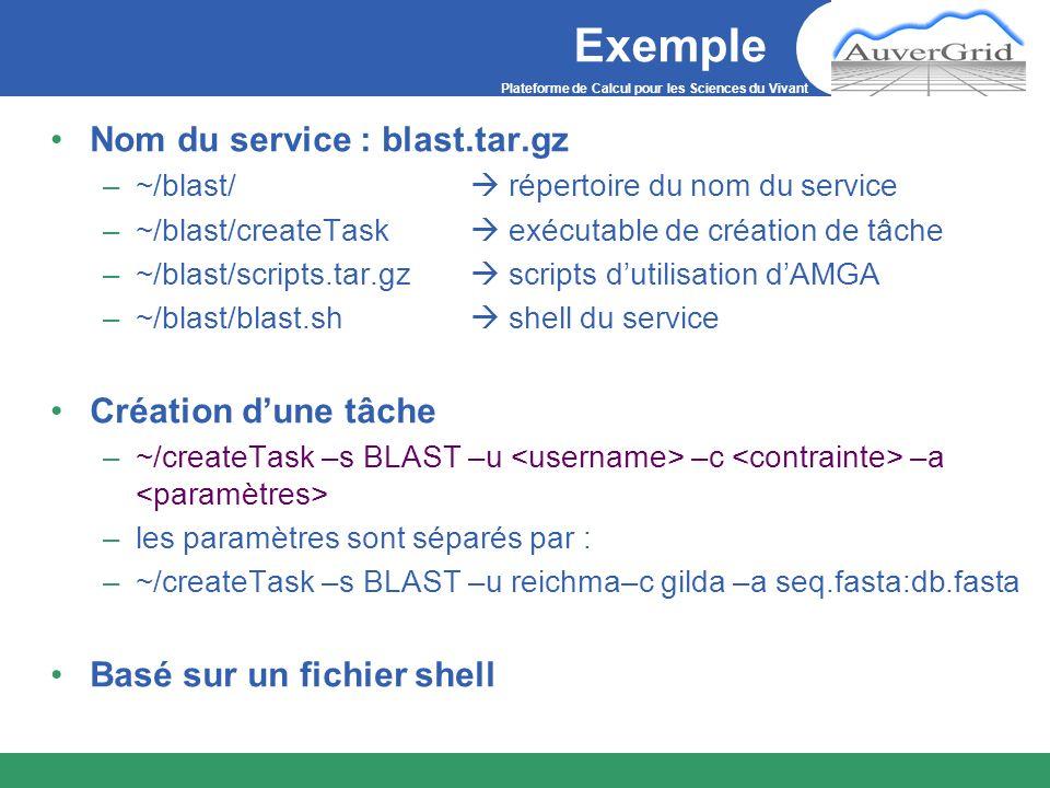 Exemple Nom du service : blast.tar.gz Création d'une tâche