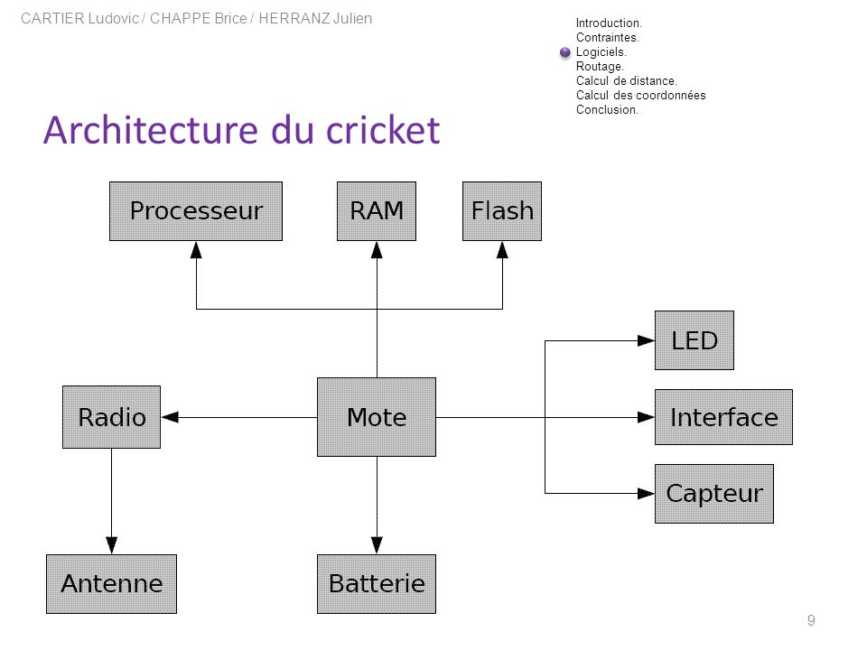 Architecture du cricket