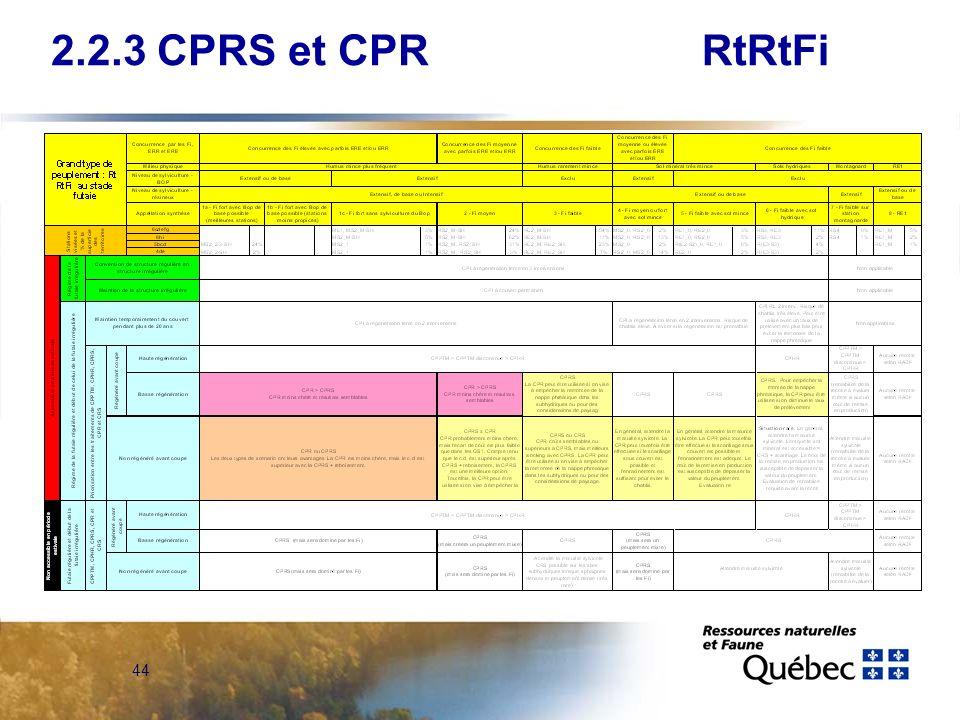 2.2.3 CPRS et CPR RtRtFi