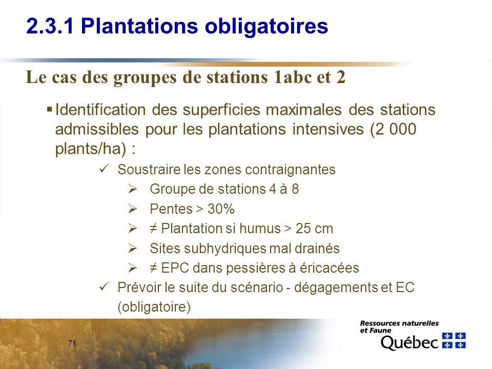 2.3.1 Plantations obligatoires