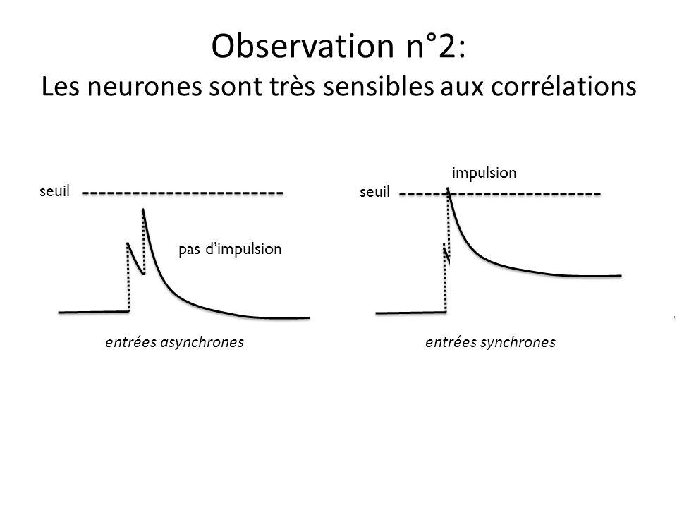 Observation n°2: Les neurones sont très sensibles aux corrélations