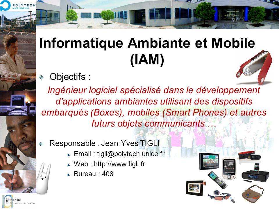 Informatique Ambiante et Mobile (IAM)