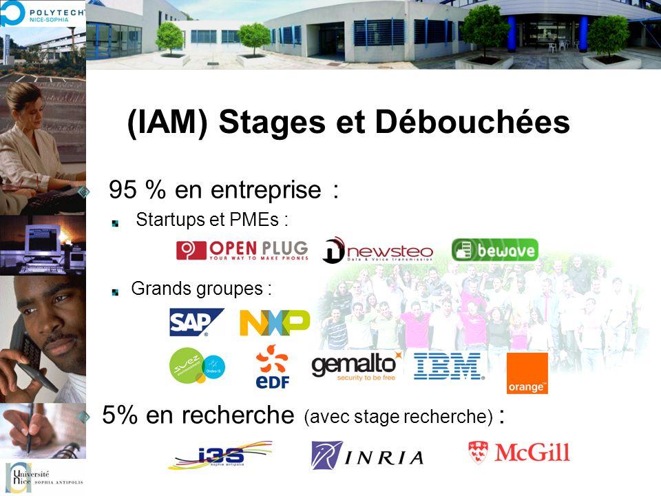 (IAM) Stages et Débouchées