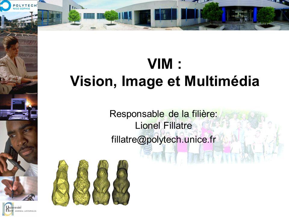 VIM : Vision, Image et Multimédia