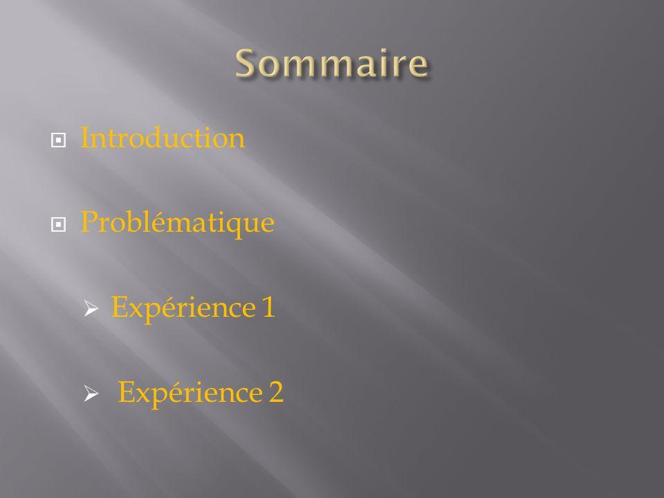 Sommaire Introduction Problématique Expérience 1 Expérience 2