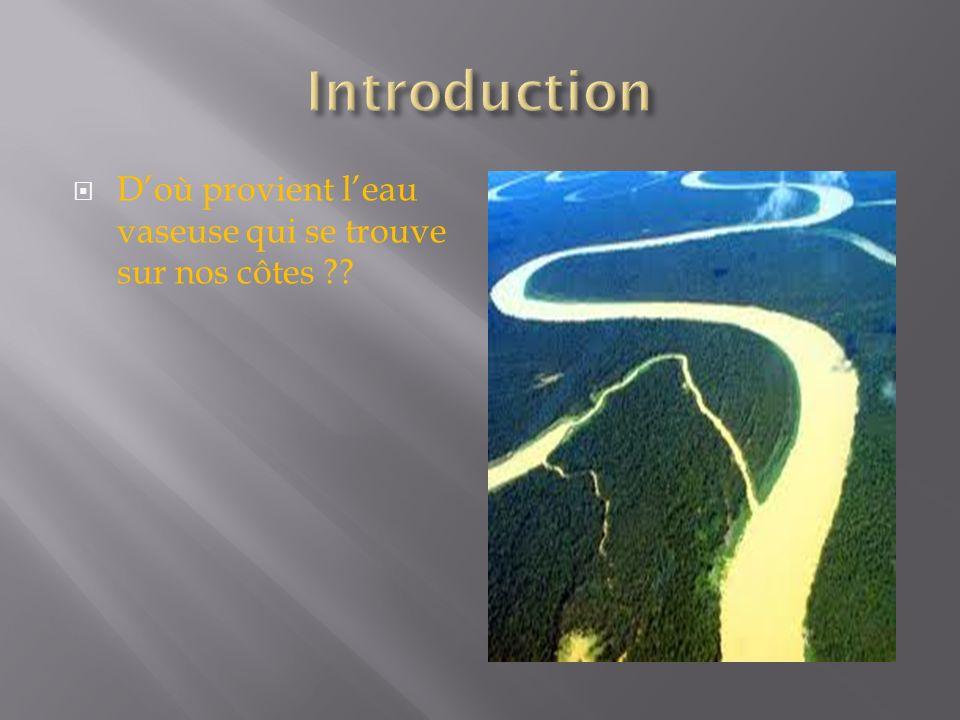 Introduction D'où provient l'eau vaseuse qui se trouve sur nos côtes