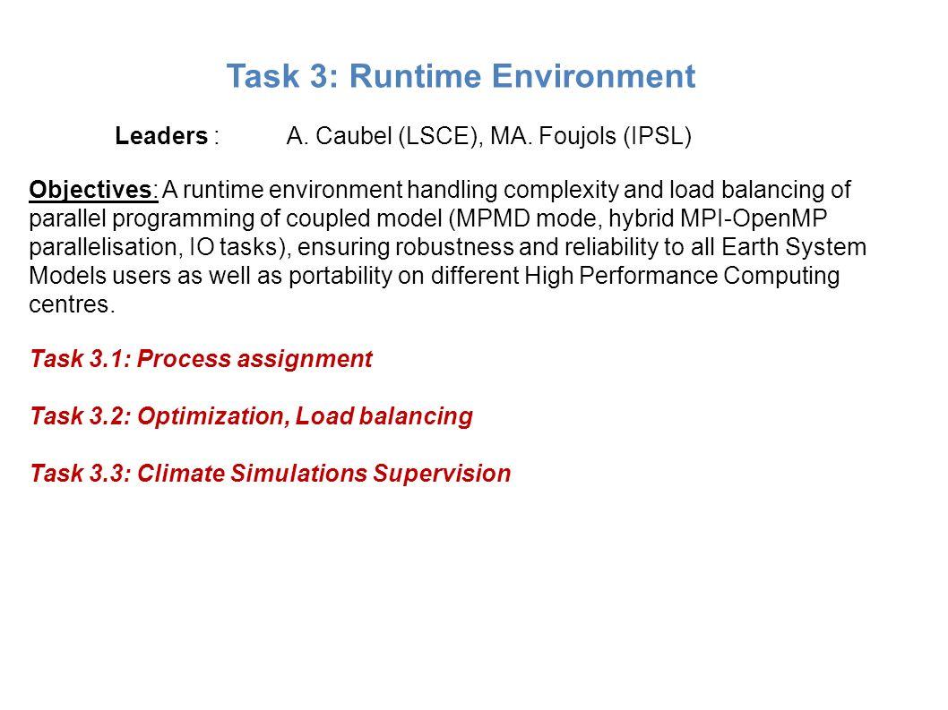 Task 3: Runtime Environment
