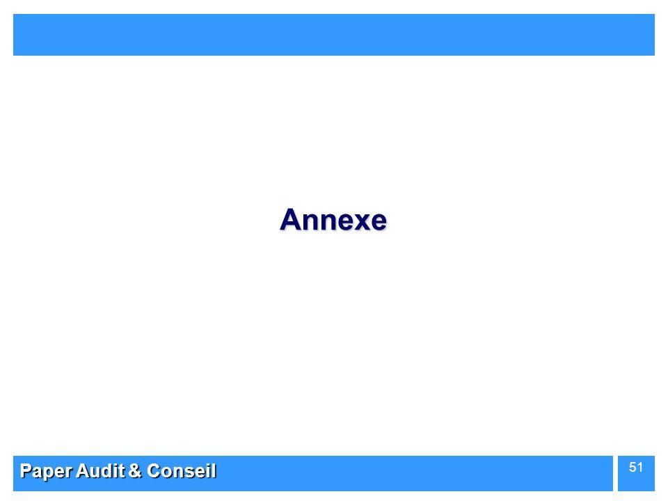 Annexe Paper Audit & Conseil