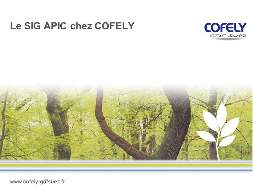 Le SIG APIC chez COFELY