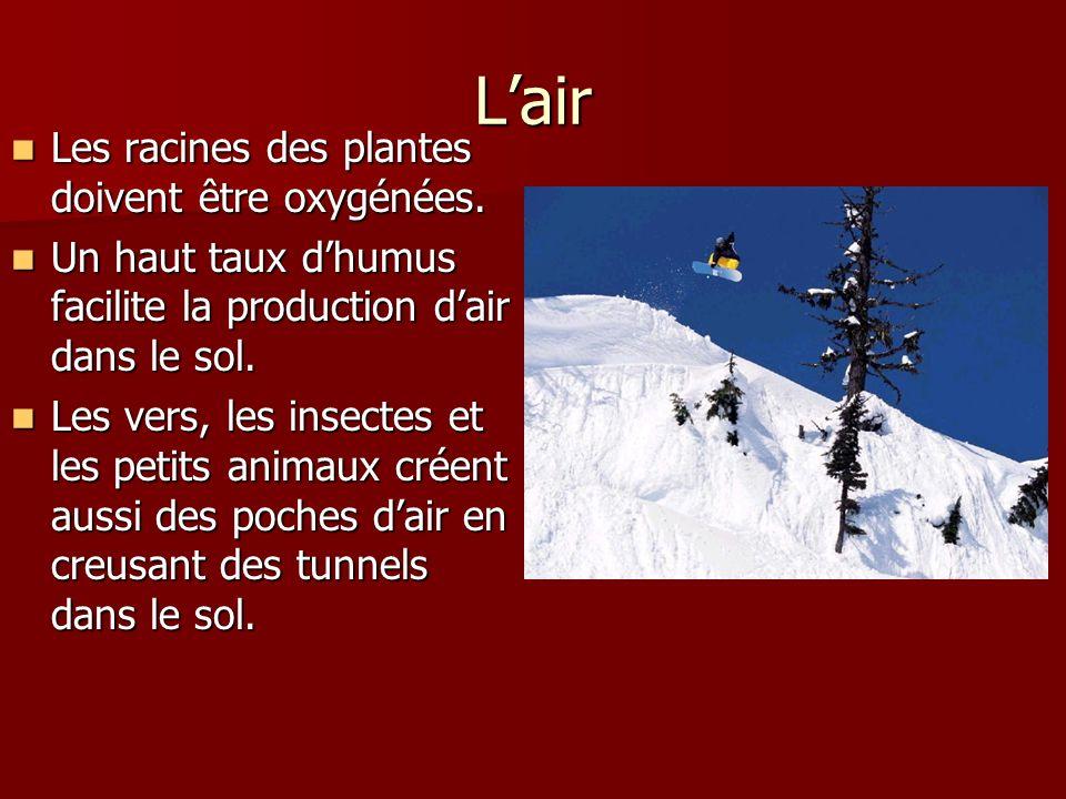 L'air Les racines des plantes doivent être oxygénées.