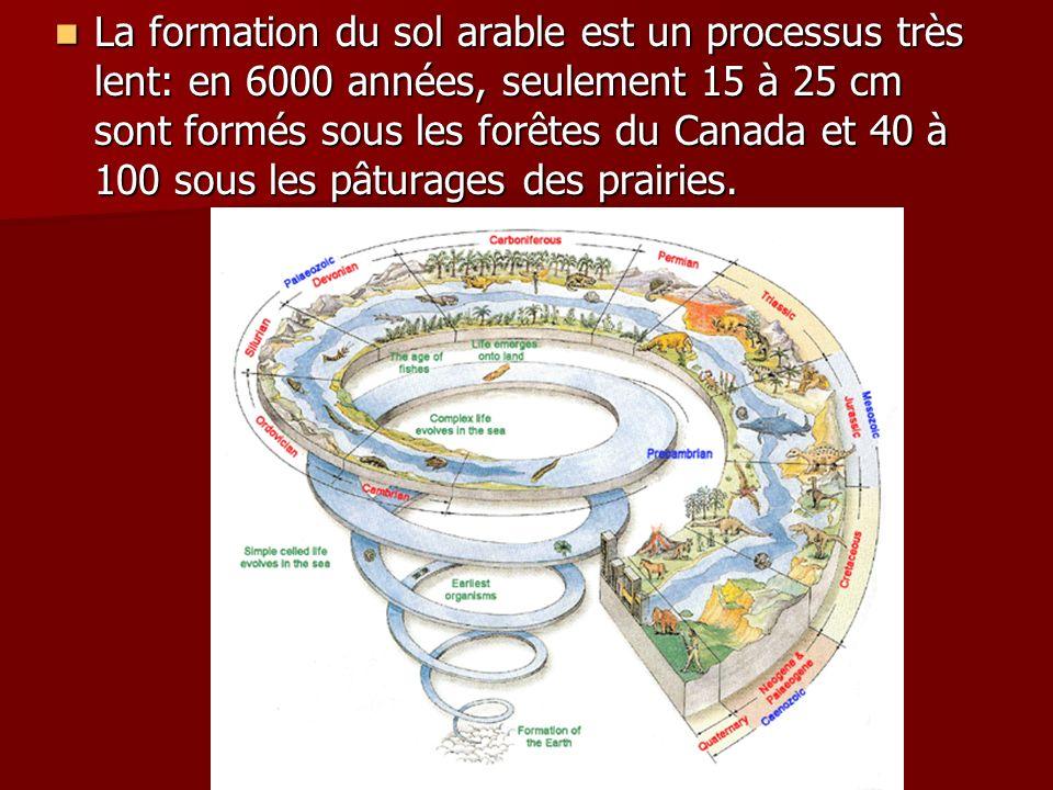La formation du sol arable est un processus très lent: en 6000 années, seulement 15 à 25 cm sont formés sous les forêtes du Canada et 40 à 100 sous les pâturages des prairies.