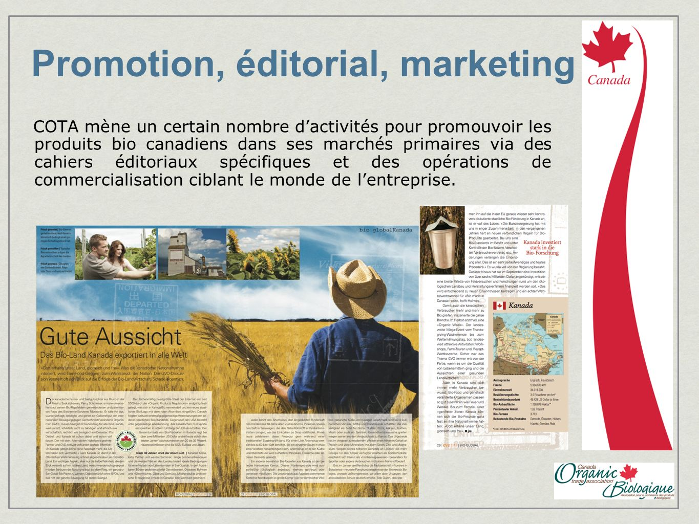 Promotion, éditorial, marketing