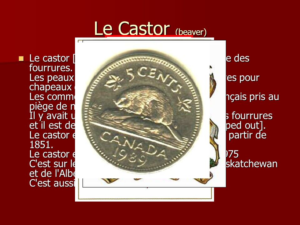 Le Castor (beaver)