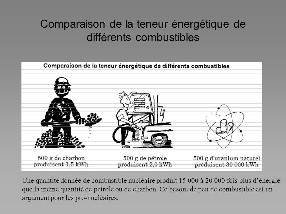 Comparaison de la teneur énergétique de différents combustibles