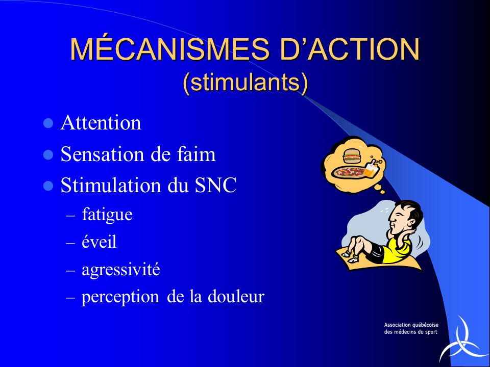 MÉCANISMES D'ACTION (stimulants)