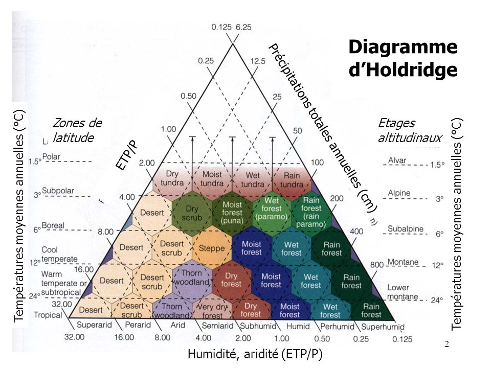 Diagramme d'Holdridge