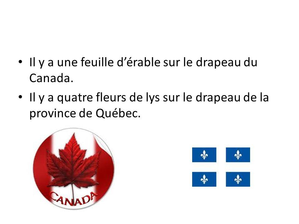 Il y a une feuille d'érable sur le drapeau du Canada.