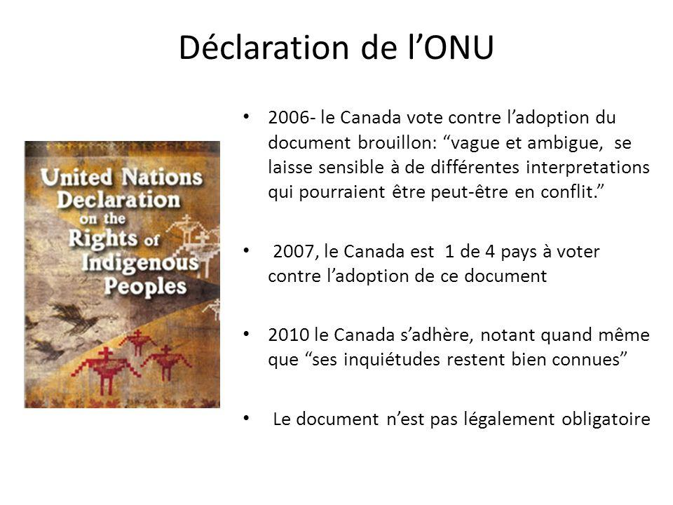 Déclaration de l'ONU