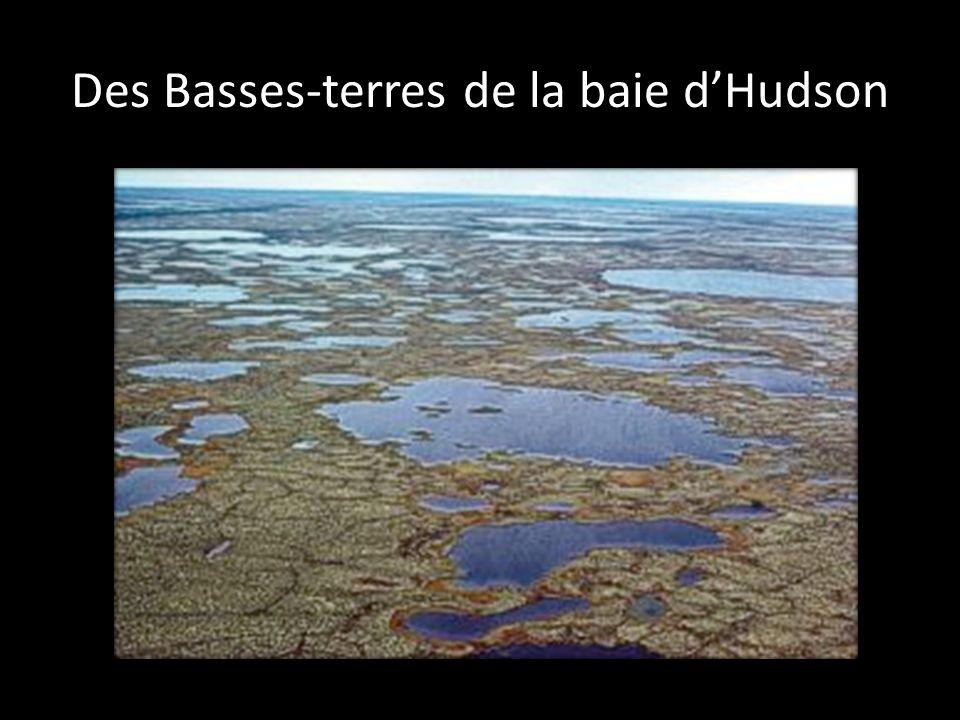 Des Basses-terres de la baie d'Hudson