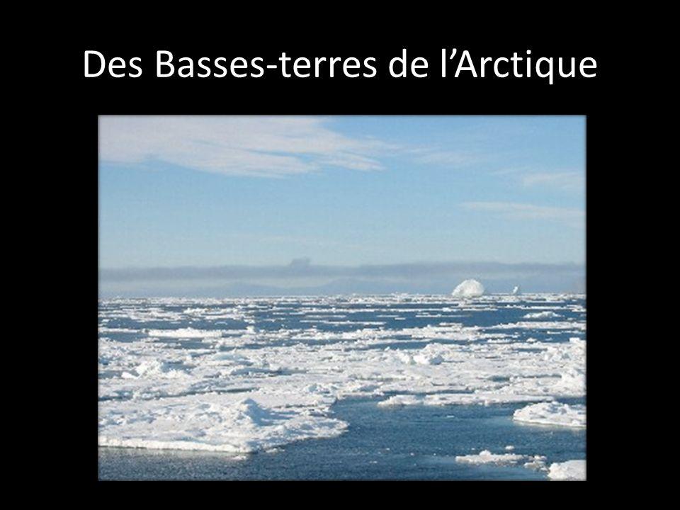 Des Basses-terres de l'Arctique