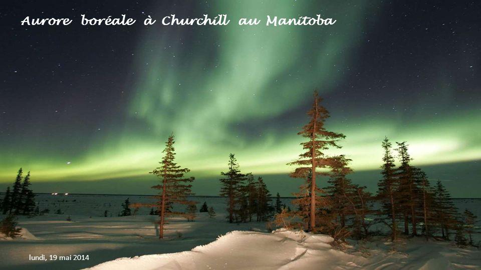 Aurore boréale à Churchill au Manitoba