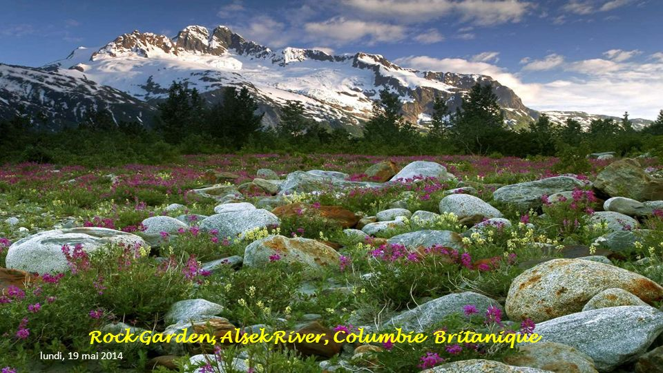 Rock Garden, Alsek River, Columbie Britanique