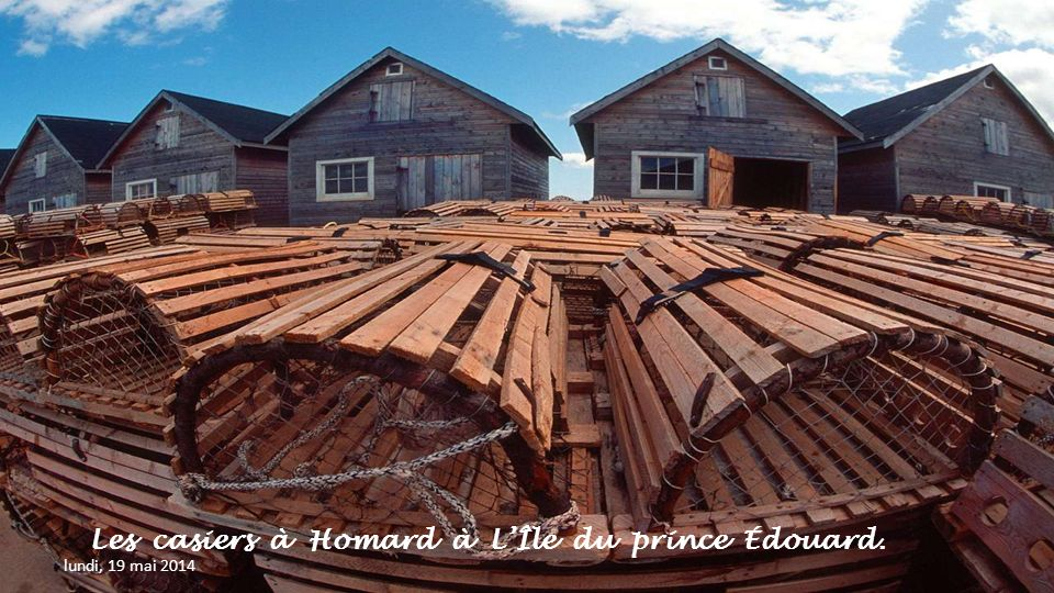 Les casiers à Homard à L'Île du prince Édouard.